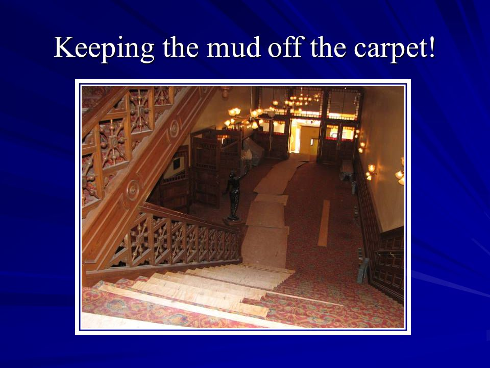 Keeping the mud off the carpet!