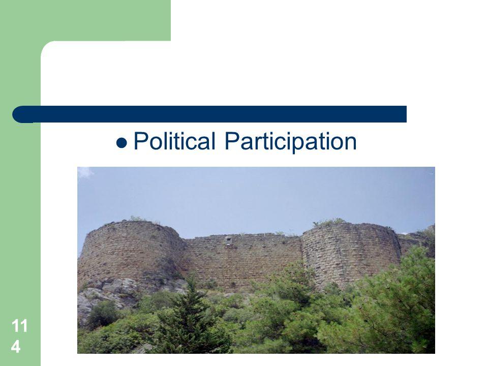 114 Political Participation