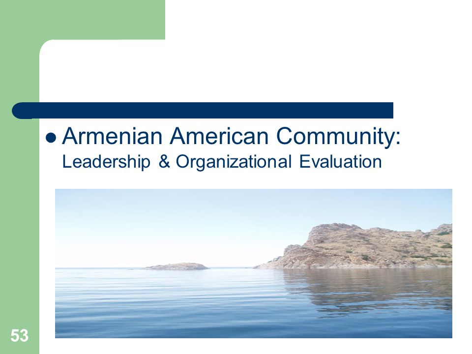 53 Armenian American Community: Leadership & Organizational Evaluation