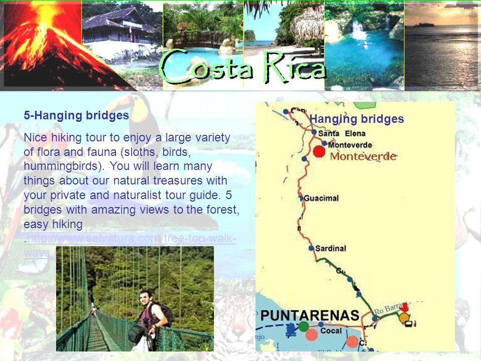 5-Hanging bridges Nice hiking tour to enjoy a large variety of flora and fauna (sloths, birds, hummingbirds).