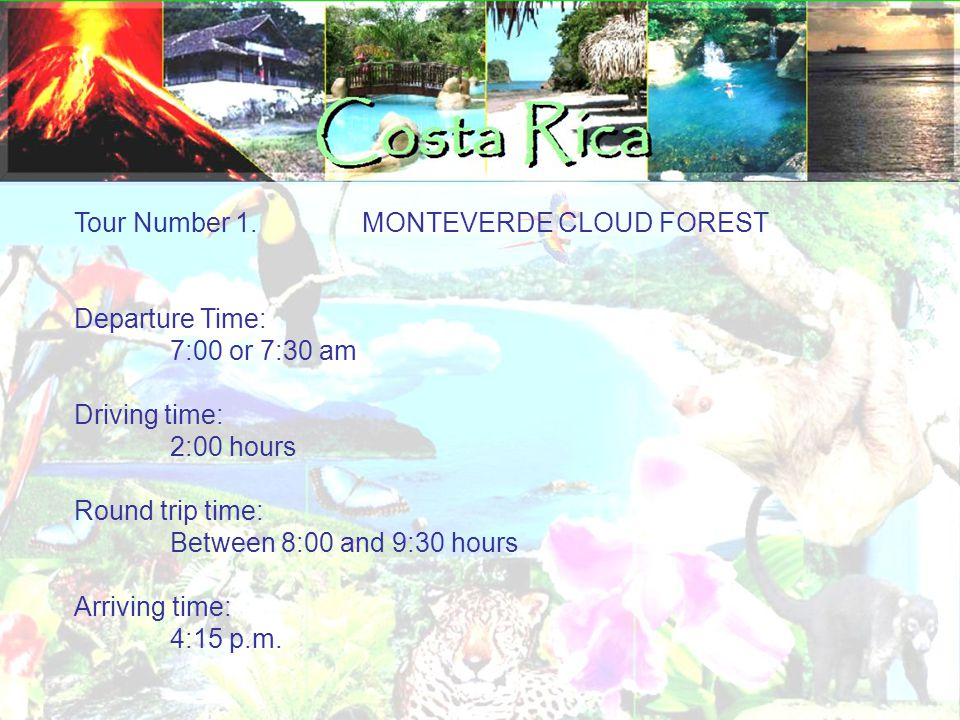 Tour Number 1.MONTEVERDE CLOUD FOREST Departure Time: 7:00 or 7:30 am Driving time: 2:00 hours Round trip time: Between 8:00 and 9:30 hours Arriving time: 4:15 p.m.