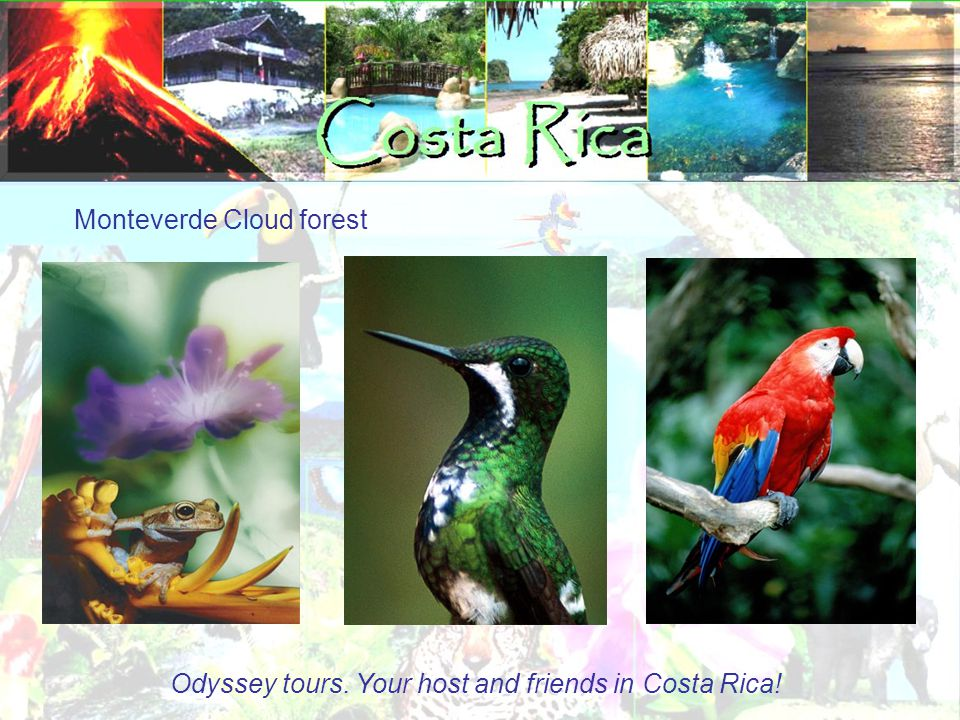 Monteverde Cloud forest Odyssey tours. Your host and friends in Costa Rica!