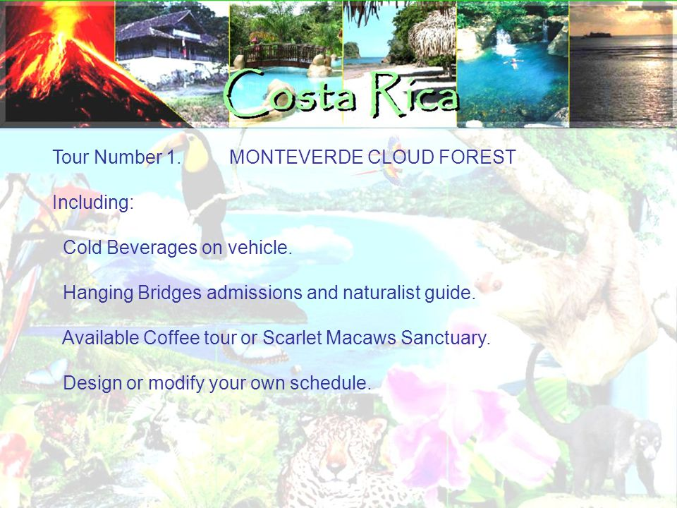 Tour Number 1. MONTEVERDE CLOUD FOREST Including: Cold Beverages on vehicle. Hanging Bridges admissions and naturalist guide. Available Coffee tour or