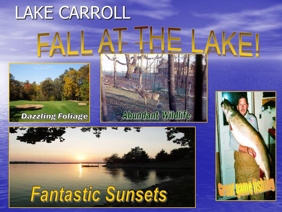 LAKE CARROLL Campground (property owners only) Campground (property owners only) Equestrian Area Equestrian Area Fish Hatchery Fish Hatchery Numerous Social Clubs Numerous Social Clubs