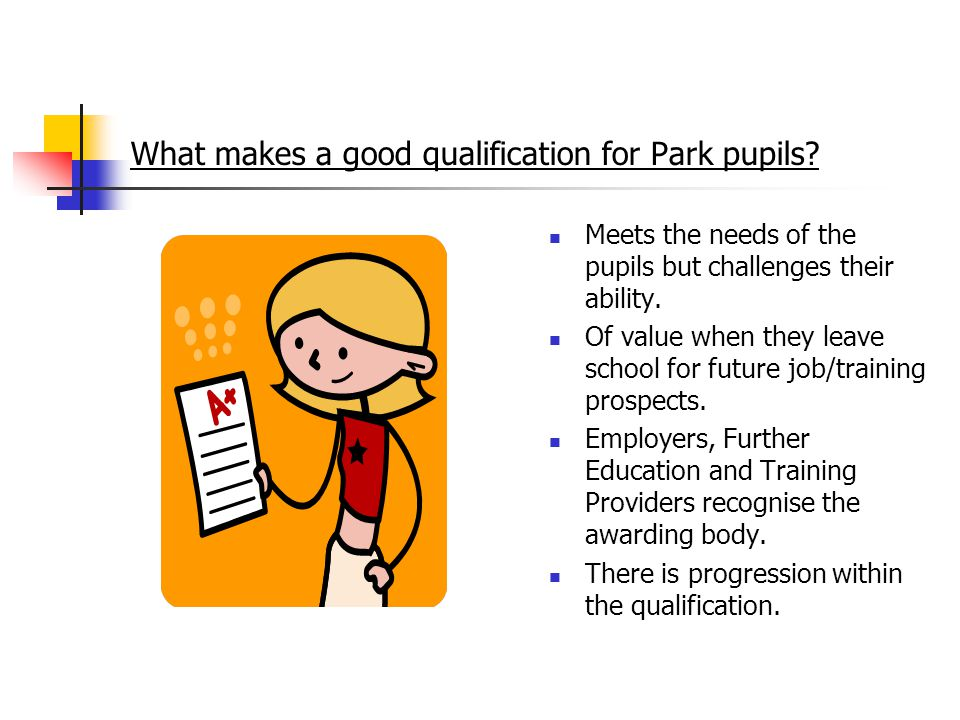 What makes a good qualification for Park pupils.