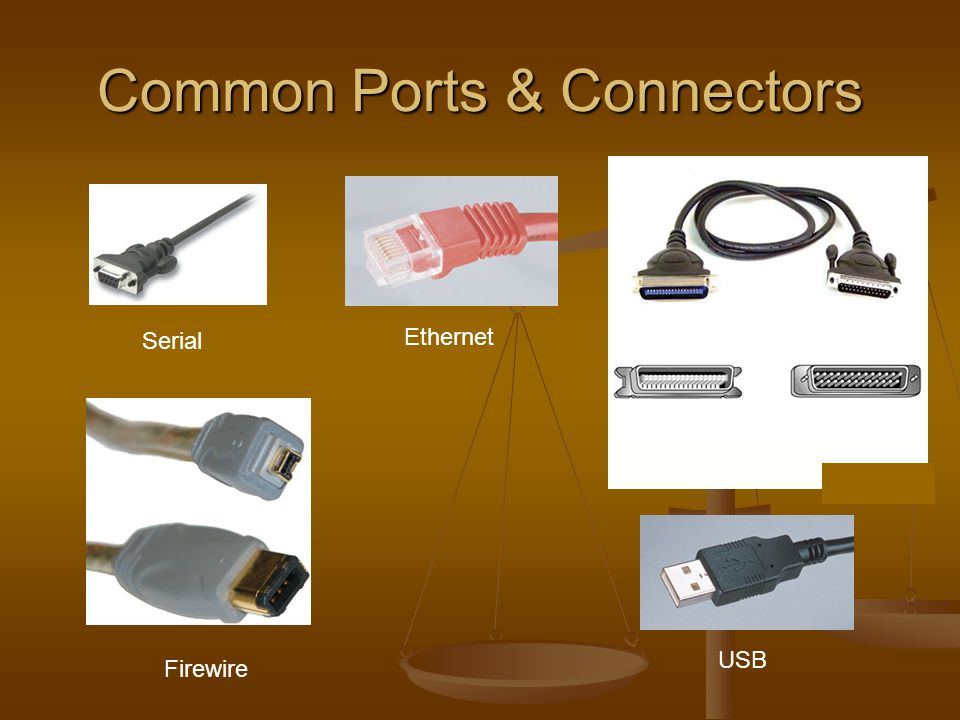 Common Ports & Connectors Serial Ethernet USB Firewire Parallel