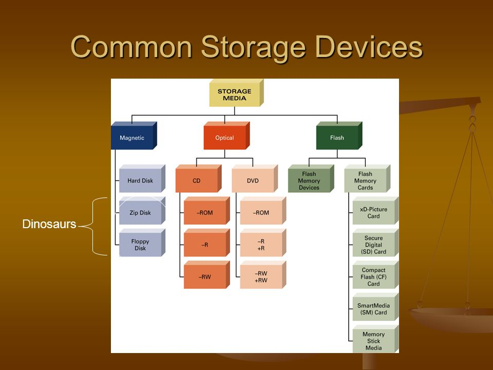 Common Storage Devices Dinosaurs