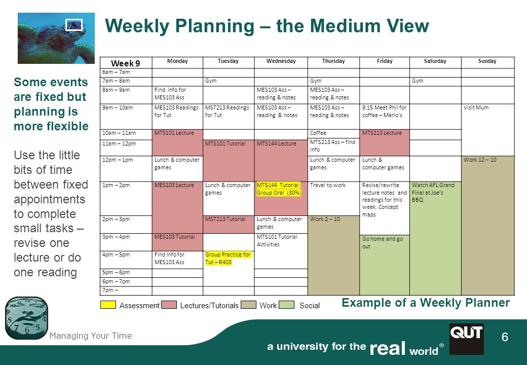 Managing Your Time 6 Assessment Lectures/Tutorials Work Social Weekly Planning – the Medium View Week 9 MondayTuesdayWednesdayThursdayFridaySaturdaySunday 6am – 7am 7am – 8amGym 8am – 9amFind info for MES103 Ass MES103 Ass – reading & notes 9am – 10amMES103 Readings for Tut MST213 Readings for Tut MES103 Ass – reading & notes 9.15 Meet Phil for coffee – Merlos Visit Mum 10am – 11amMTS101 LectureCoffeeMTS213 Lecture MTS213 Ass – find info 11am – 12pmMTS101 TutorialMTS144 Lecture 12pm – 1pmLunch & computer games Work 12 – 10 1pm – 2pmMES103 LectureLunch & computer games MTS144 Tutorial Group Oral (30%) Travel to workRevise/rewrite lecture notes and readings for this week.