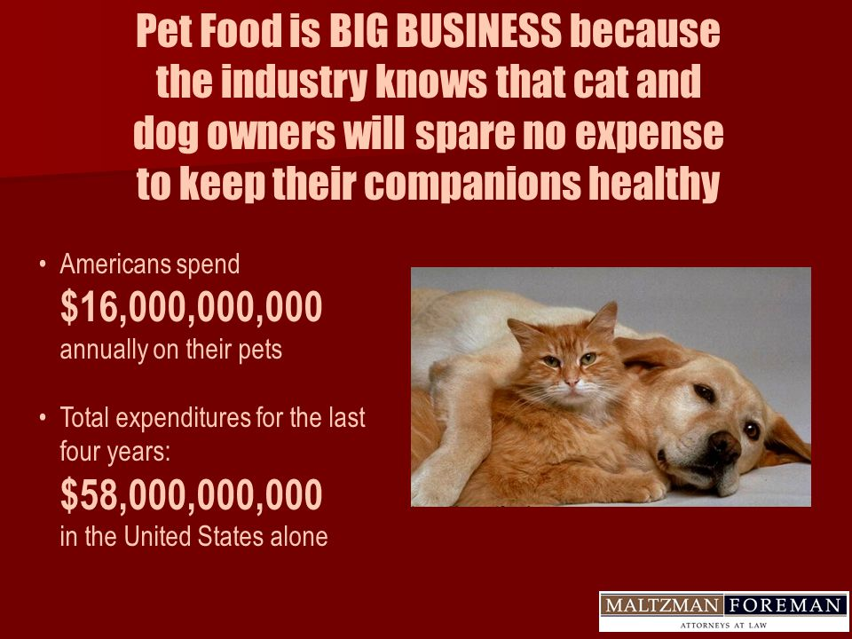 Pet Food is BIG BUSINESS because the industry knows that cat and dog owners will spare no expense to keep their companions healthy Americans spend $16,000,000,000 annually on their pets Total expenditures for the last four years: $58,000,000,000 in the United States alone