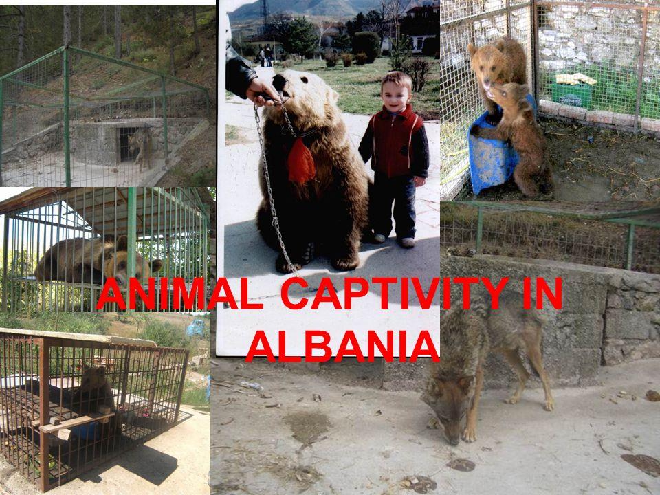 ANIMAL CAPTIVITY IN ALBANIA