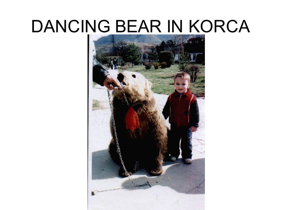 DANCING BEAR IN KORCA