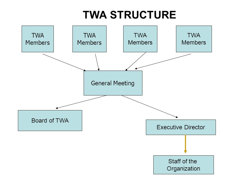 TWA STRUCTURE TWA Members General Meeting TWA Members TWA Members TWA Members Executive Director Board of TWA Staff of the Organization