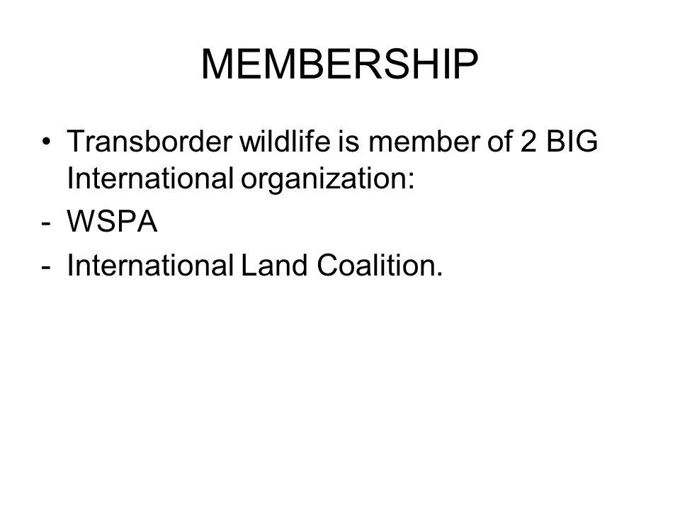 MEMBERSHIP Transborder wildlife is member of 2 BIG International organization: -WSPA -International Land Coalition.