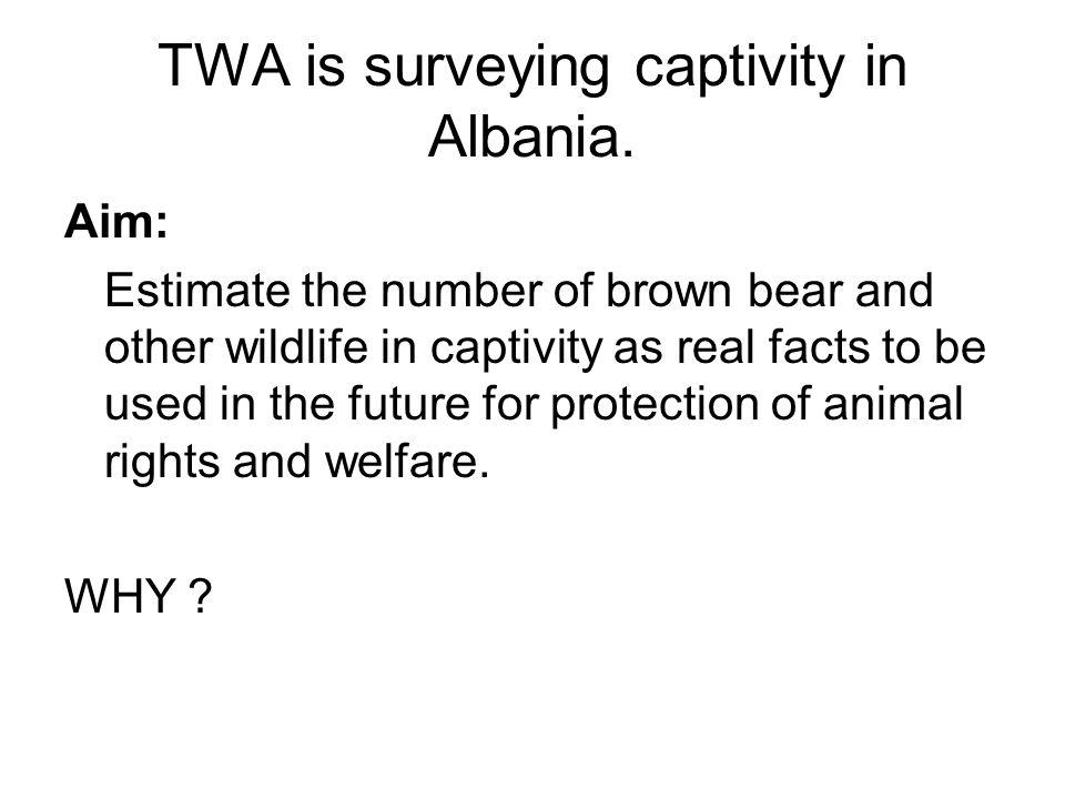 TWA is surveying captivity in Albania.
