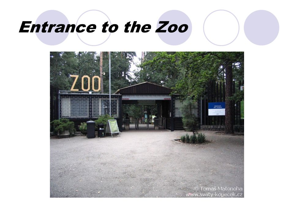 Entrance to the Zoo