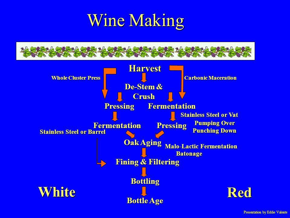 Presentation by Eddie Valente Harvest Fermentation Pressing Bottling Pressing Bottle Age Fermentation Oak Aging Whole Cluster Press Carbonic Maceratio