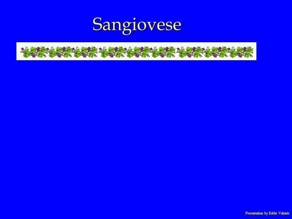 Presentation by Eddie Valente Sangiovese