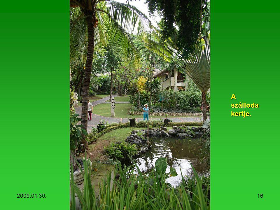 2009.01.30.Hotel Mercure, Sanur15 Hotel garden.