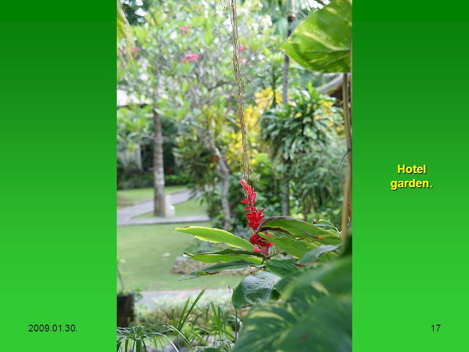 2009.01.30.Hotel Mercure, Sanur16 A szálloda kertje.