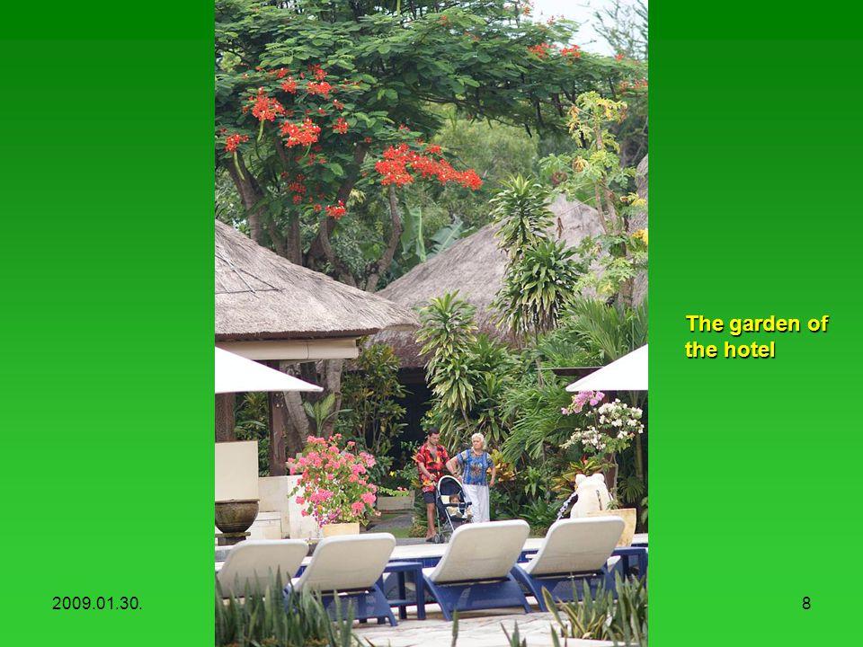 2009.01.30.Hotel Mercure, Sanur8 The garden of the hotel