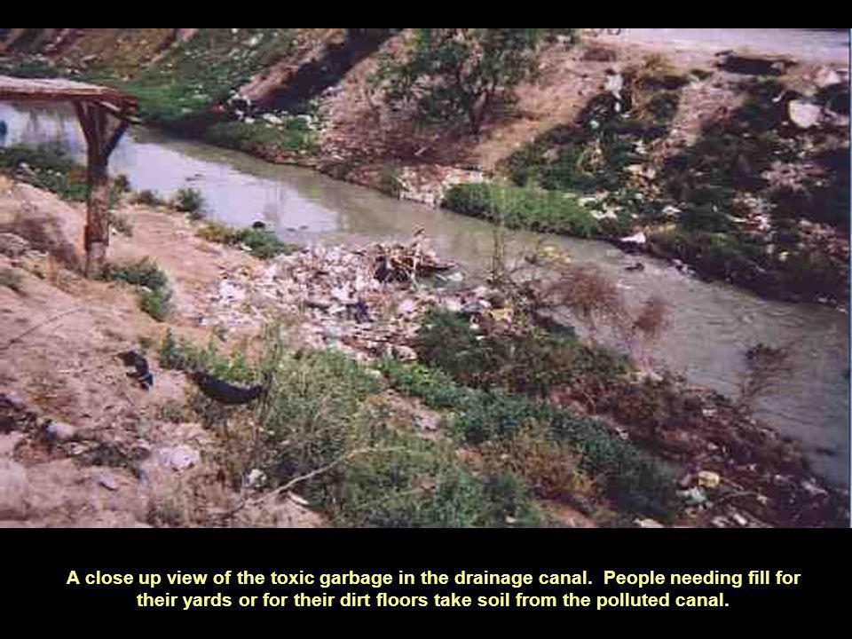 A close up view of the toxic garbage in the drainage canal.