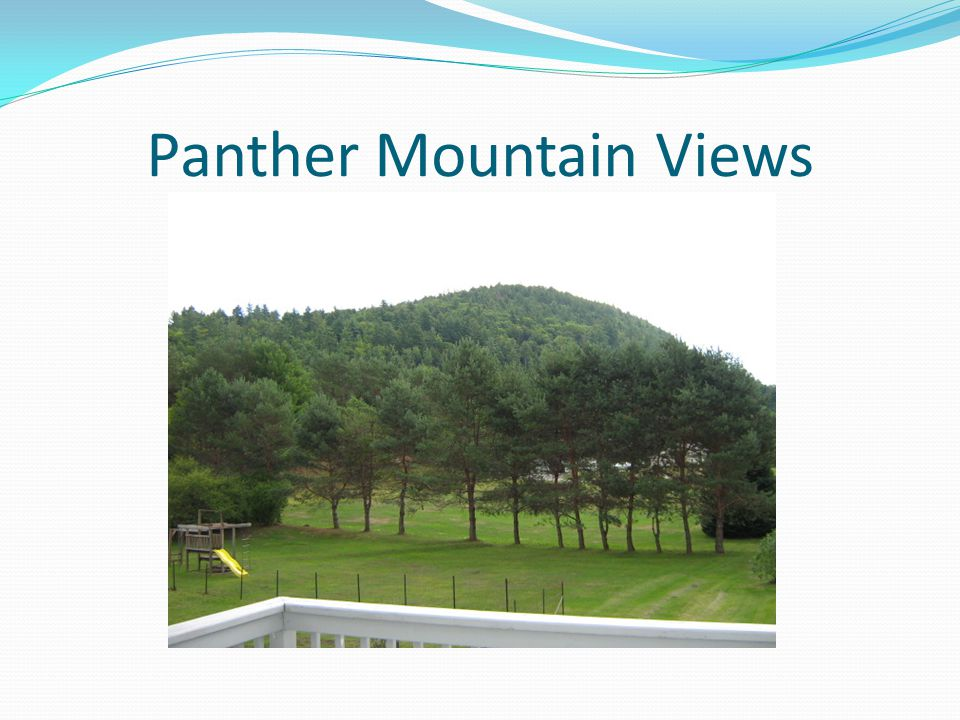 Panther Mountain Views