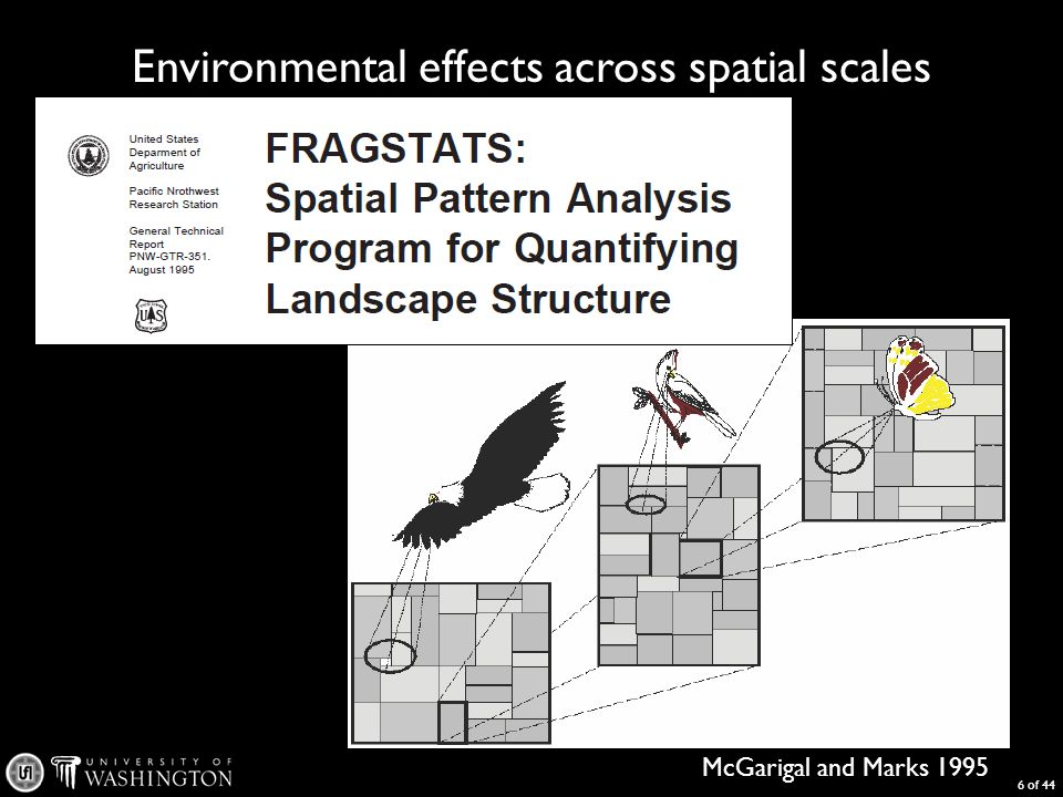 Environmental effects across spatial scales 6 of 44 McGarigal and Marks 1995