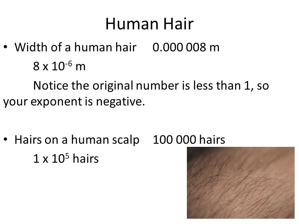 Human Hair Width of a human hair0.000 008 m 8 x 10 -6 m Notice the original number is less than 1, so your exponent is negative. Hairs on a human scal