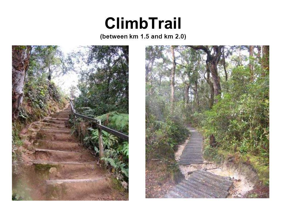 ClimbTrail (between km 1.5 and km 2.0)