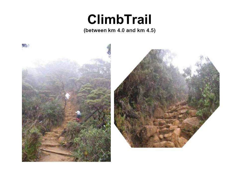 ClimbTrail (between km 4.0 and km 4.5)
