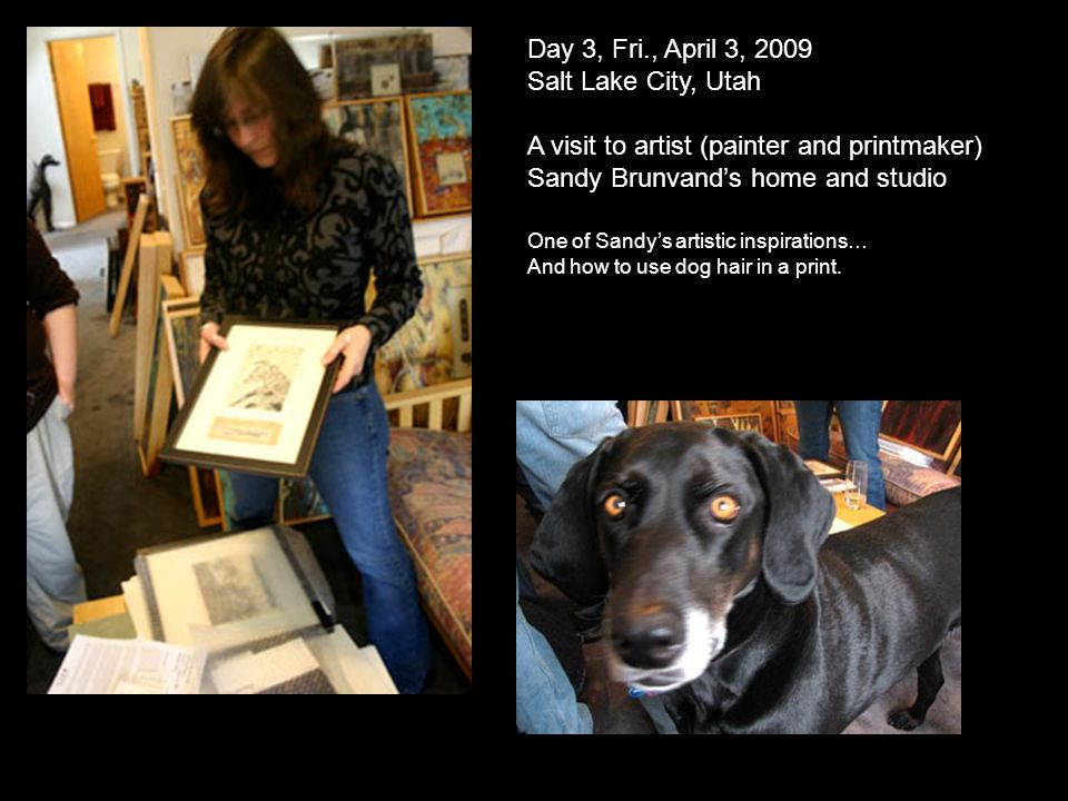 Day 3, Fri., April 3, 2009 Salt Lake City, Utah A visit to artist (painter and printmaker) Sandy Brunvands home and studio One of Sandys artistic inspirations… And how to use dog hair in a print.