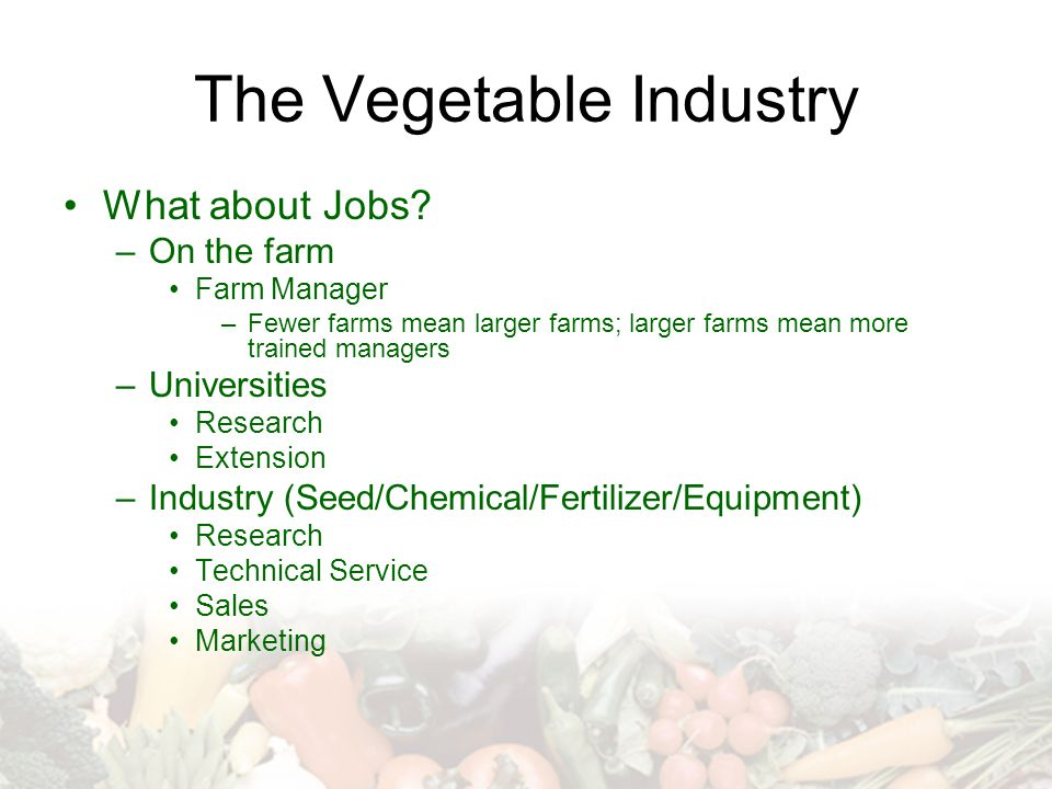 The Vegetable Industry What about Jobs.
