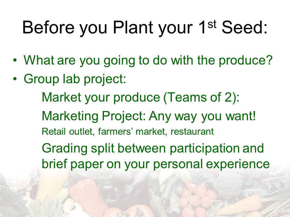 Before you Plant your 1 st Seed: What are you going to do with the produce.
