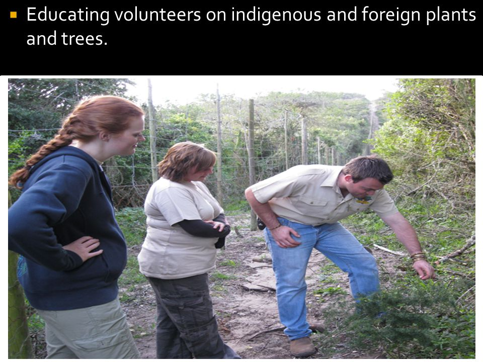 Educating volunteers on indigenous and foreign plants and trees.