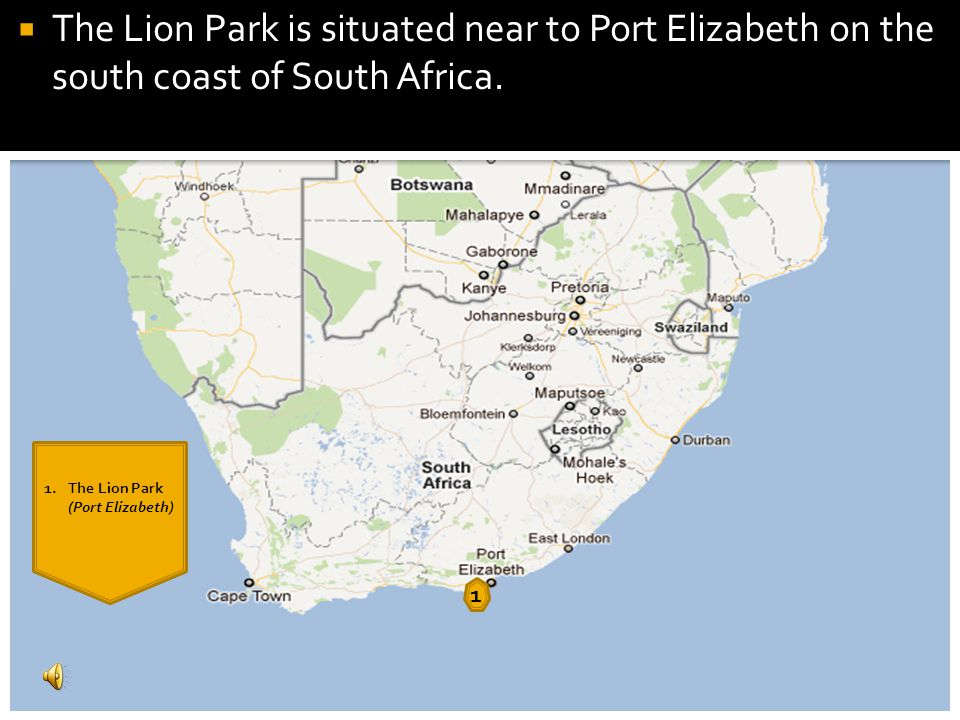 1 The Lion Park is situated near to Port Elizabeth on the south coast of South Africa.