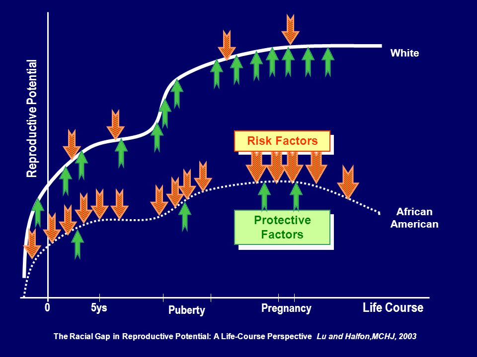 White African American Puberty Pregnancy 05ys The Racial Gap in Reproductive Potential: A Life-Course Perspective Lu and Halfon,MCHJ, 2003 Reproductive Potential Risk Factors Life Course Protective Factors