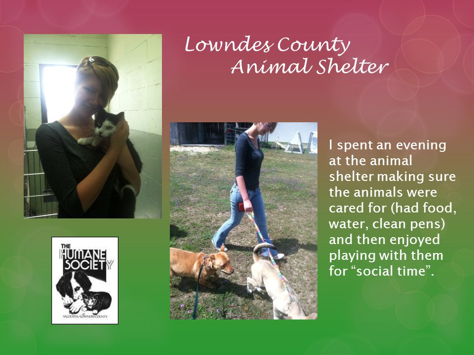 Lowndes County Animal Shelter I spent an evening at the animal shelter making sure the animals were cared for (had food, water, clean pens) and then enjoyed playing with them for social time.