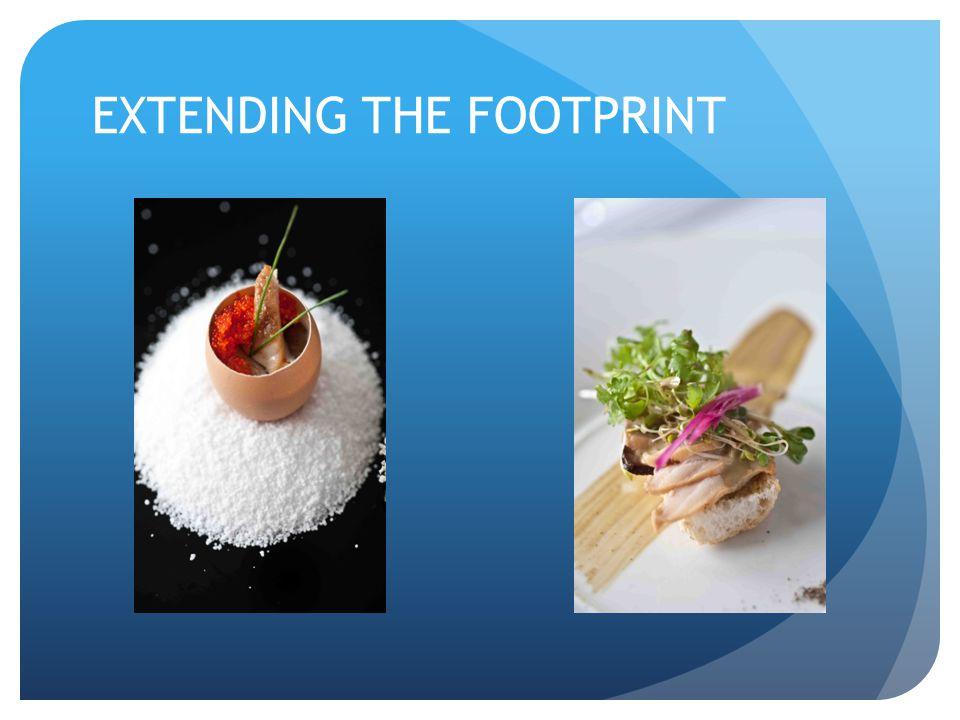 EXTENDING THE FOOTPRINT