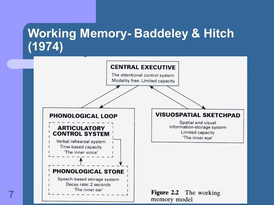 7 Working Memory- Baddeley & Hitch (1974)