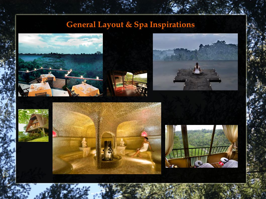 General Layout & Spa Inspirations