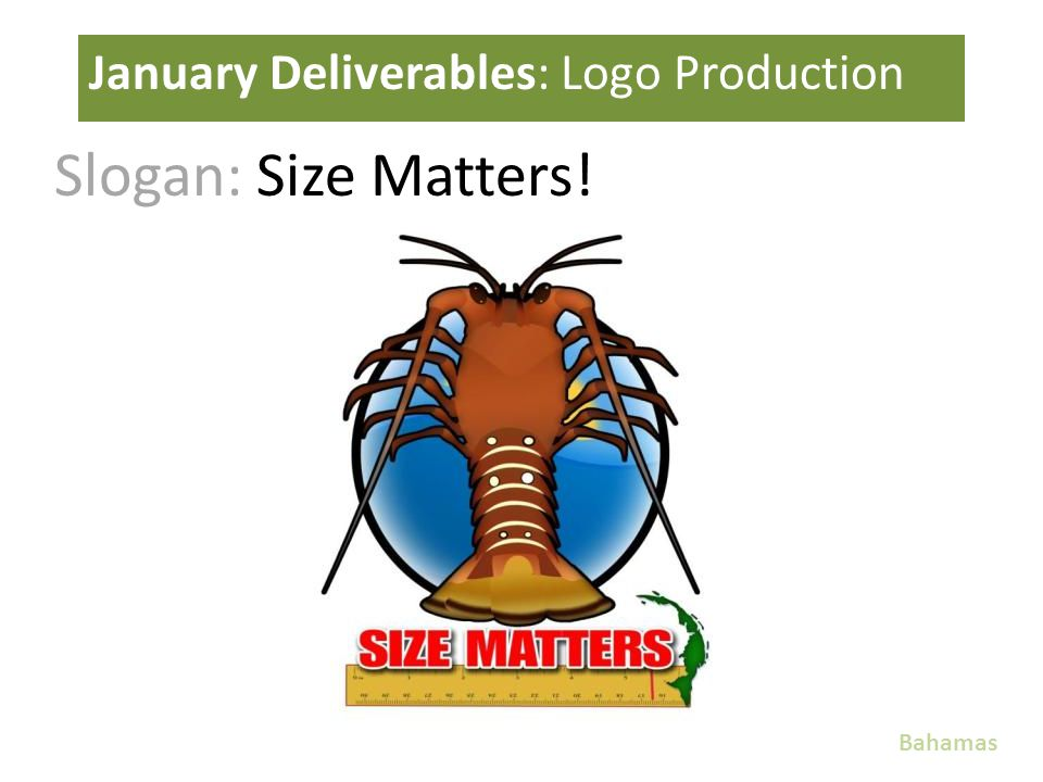 Slogan: Size Matters! January Deliverables: Logo Production Bahamas