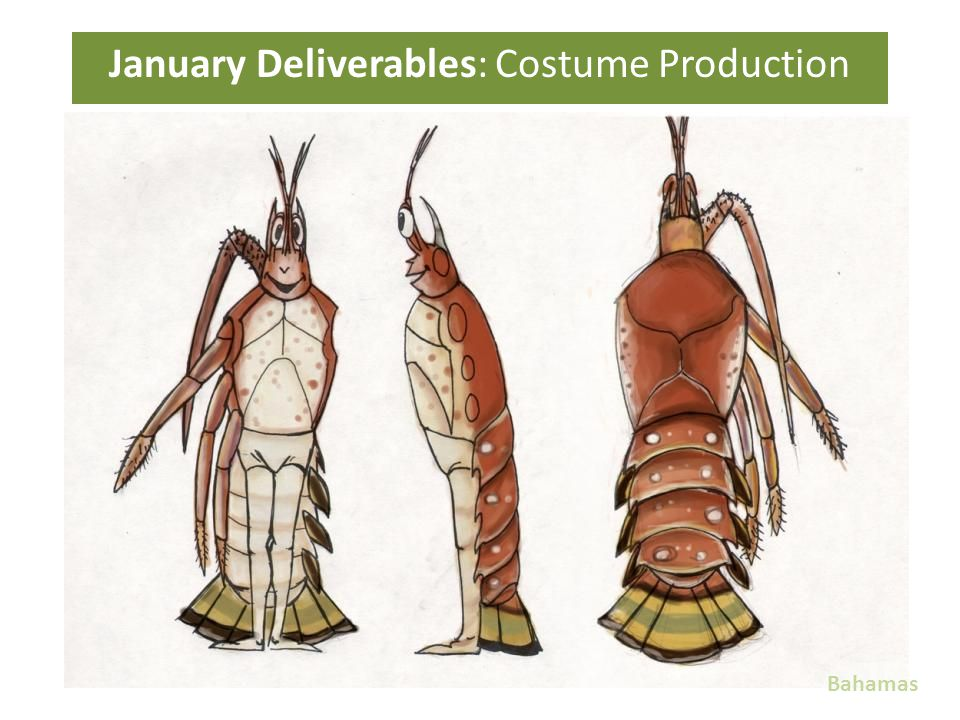 January Deliverables: Costume Production Bahamas