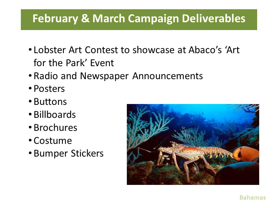 February & March Campaign Deliverables Bahamas Lobster Art Contest to showcase at Abacos Art for the Park Event Radio and Newspaper Announcements Post
