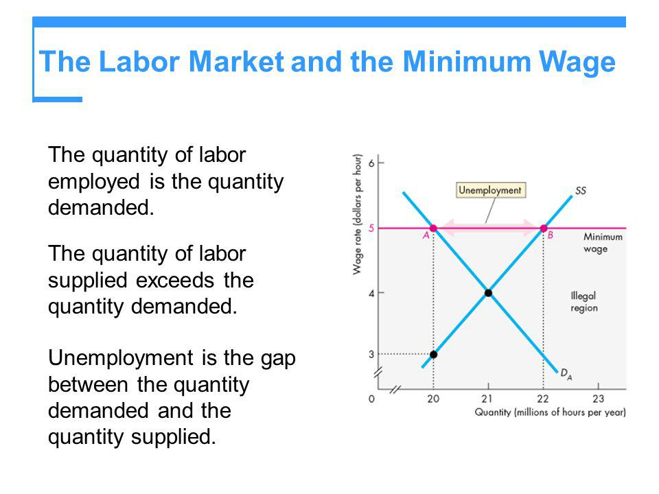 The Labor Market and the Minimum Wage The quantity of labor employed is the quantity demanded. The quantity of labor supplied exceeds the quantity dem