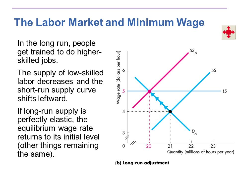 The Labor Market and Minimum Wage In the long run, people get trained to do higher- skilled jobs.