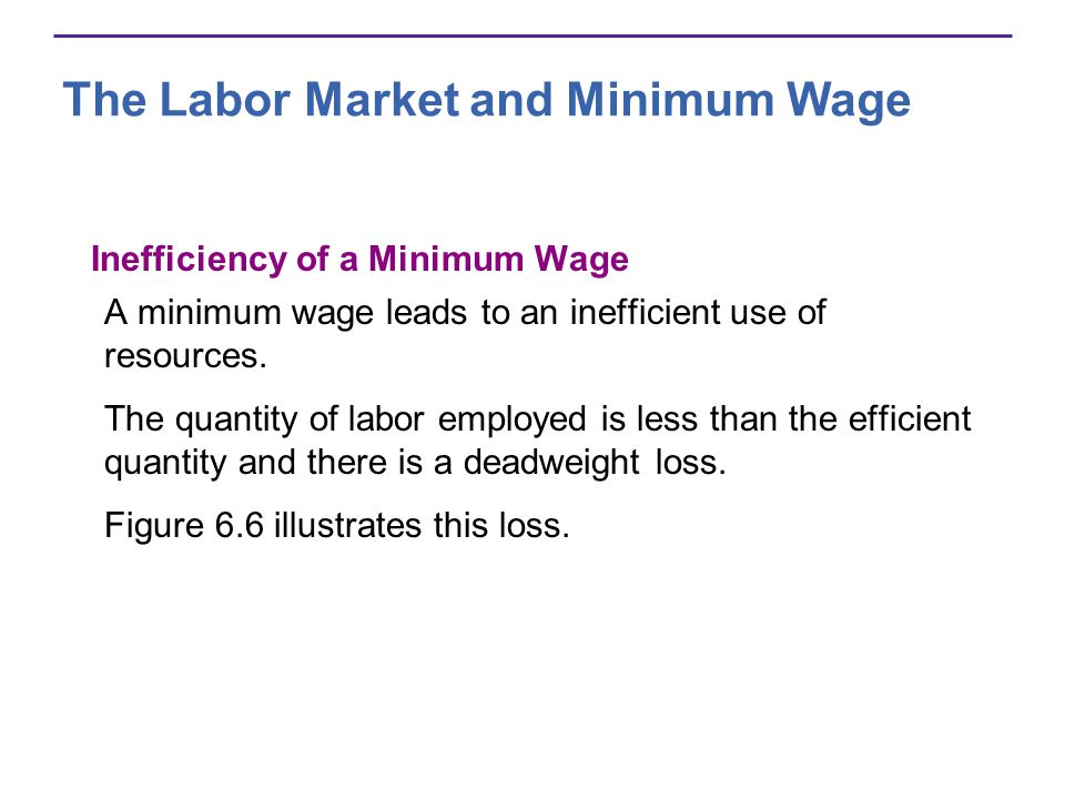 The Labor Market and Minimum Wage Inefficiency of a Minimum Wage A minimum wage leads to an inefficient use of resources.