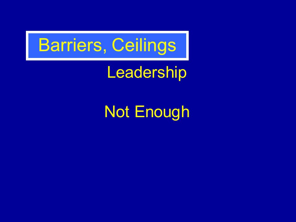 Leadership Not Enough Barriers, Ceilings