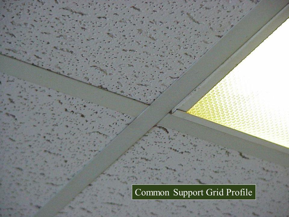 Common Support Grid Profile