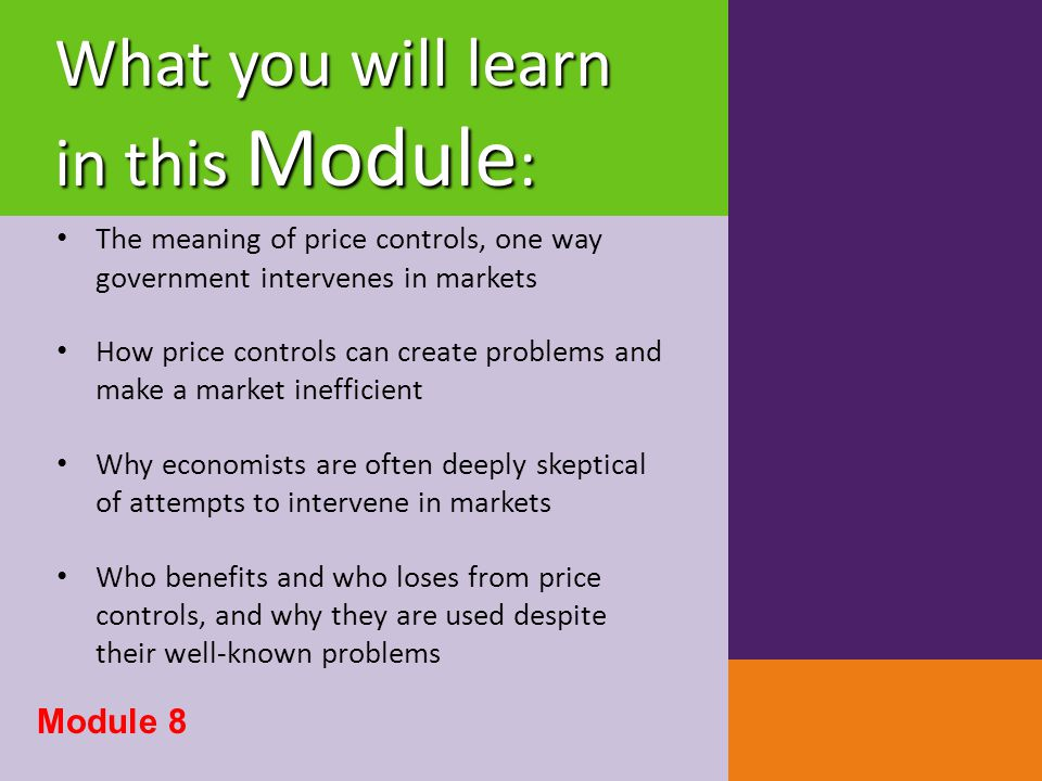 Modeling a Price Floor Module 8