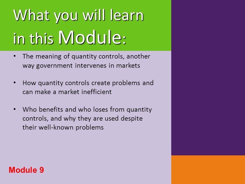The Anatomy of Quantity Controls Demand Price Supply Price Wedge - Quota Rent Module 9
